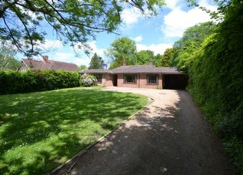 Thumbnail 4 bed bungalow for sale in Fir Toll Road, Mayfield, East Sussex
