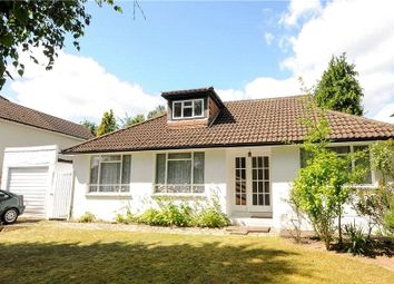 Thumbnail 4 bed detached bungalow for sale in Trotsworth Avenue, Virginia Water, Surrey