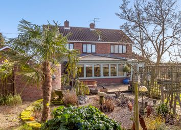 Thumbnail 5 bed detached house for sale in Acacia Road, Colchester, Suffolk
