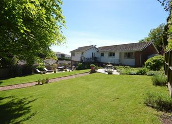 Thumbnail 4 bed detached house for sale in The Drive, Dawlish, Devon