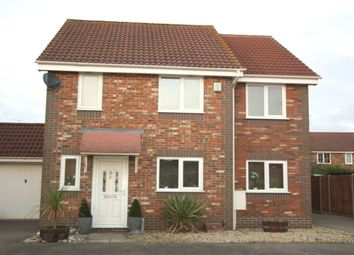 Thumbnail 4 bed detached house for sale in Edgehill, Dussindale, Norwich