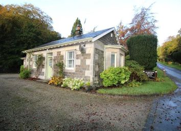 Thumbnail 2 bed detached house to rent in Church Street, Kilbarchan, Johnstone, Renfrewshire