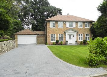 Thumbnail 4 bedroom detached house to rent in Branksome Close, Camberley