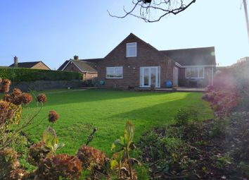 Thumbnail 5 bed detached bungalow for sale in Dancing Lane, Wincanton