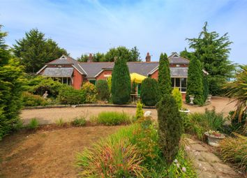 Thumbnail 5 bed detached house for sale in Halvergate, Norwich