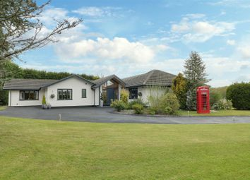 Thumbnail 3 bed detached bungalow for sale in Nursery Road, Oakhanger, Crewe