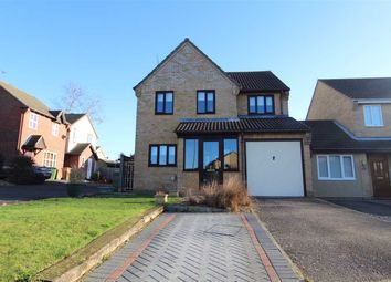 Thumbnail 4 bedroom detached house for sale in Dashwood Close, Ipswich