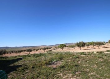 Thumbnail Land for sale in Torre Del Rico, Alicante, Spain