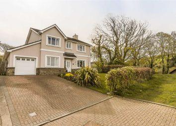 Thumbnail 4 bed detached house for sale in Creggan Ashen, Glen Maye Park, Glen Maye, Isle Of Man