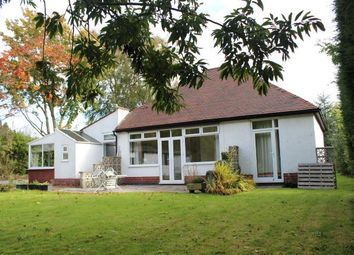 Thumbnail 3 bed bungalow to rent in Brizlincote Lane, Burton-On-Trent