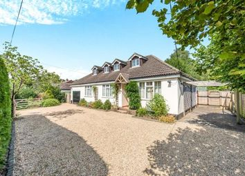 Thumbnail 4 bed bungalow for sale in Godalming, Surrey, .