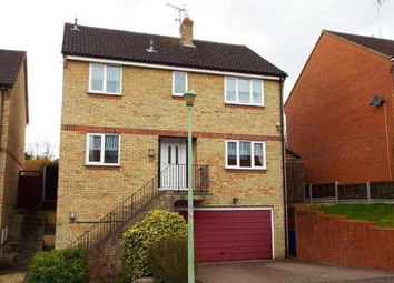 Thumbnail 4 bedroom detached house to rent in Dovehouse Road, Haverhill
