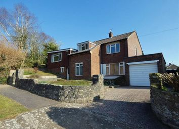 Thumbnail 1 bed detached house to rent in Anderson Road, Salisbury, Wiltshire