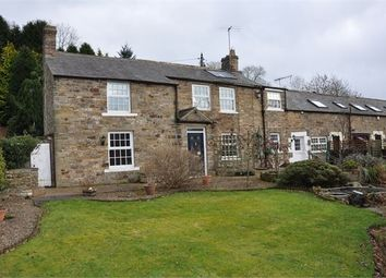 Thumbnail 3 bed semi-detached house for sale in Townfoot Farmhouse, Haltwhistle, Northumberland.