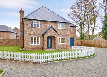 Thumbnail 4 bed detached house for sale in Amiens Close, Hunsdon, Hertfordshire