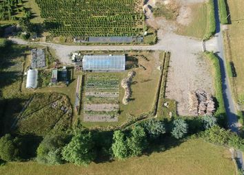 Thumbnail Land for sale in Ysbyty Ystwyth, Ystrad Meurig