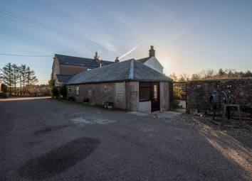Thumbnail 1 bed cottage to rent in Nether Finlarg Cottage Nether Finlarg, Forfar