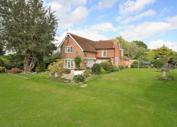 Thumbnail 4 bedroom equestrian property for sale in Greenwood Lane, Durley, Southampton