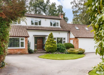 Thumbnail 4 bed detached house for sale in Hunters Quay, Dormer Close, Crowthorne