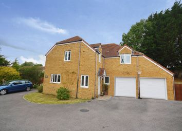 Thumbnail 5 bed detached house to rent in Silver Street, South Petherton