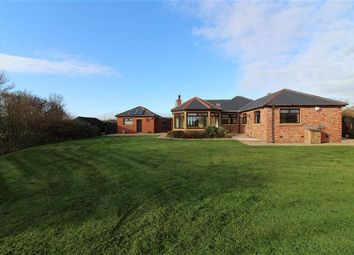 Thumbnail 3 bed bungalow to rent in Knitting Row Lane, Out Rawcliffe, Preston
