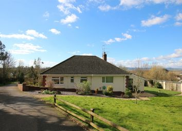 Thumbnail 3 bed detached bungalow for sale in Ebford Lane, Ebford, Exeter