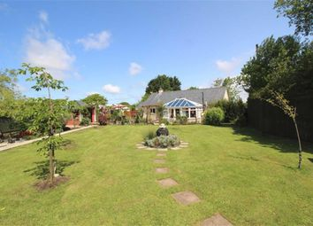 Thumbnail 2 bed detached bungalow for sale in Tremaine, Launceston