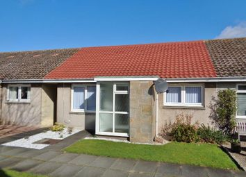 Thumbnail 2 bed semi-detached bungalow for sale in Pitcruvie Park, Lundin Links, Leven