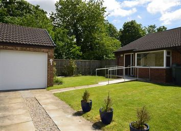 Thumbnail 2 bedroom bungalow for sale in The Meadows, Sutton Park, Hull