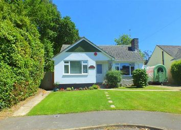 Thumbnail 4 bed bungalow for sale in Bransgore Gardens, Bransgore, Hampshire