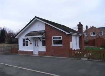 Thumbnail 2 bed detached bungalow to rent in Bryn Tirion, Sale Lane, Welshpool, Welshpool, Powys