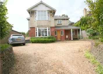 Thumbnail 4 bed detached house to rent in Eastergate, Chichester, West Sussex