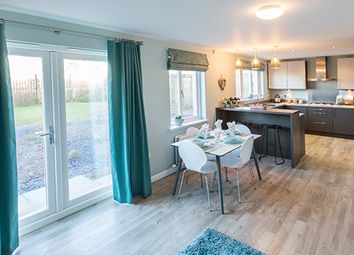 "Thumbnail 4 bed detached house for sale in ""Hampsfield"" at Old Lang Stracht, Kingswells, Aberdeen"