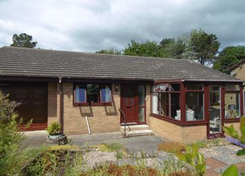 Thumbnail 2 bed bungalow for sale in Elm Court, North Broomhill, Morpeth