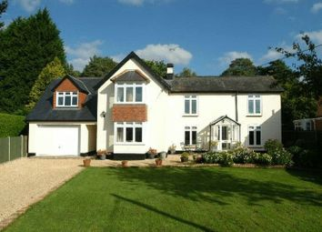 Thumbnail 5 bed detached house to rent in Princes Crescent, Lyndhurst