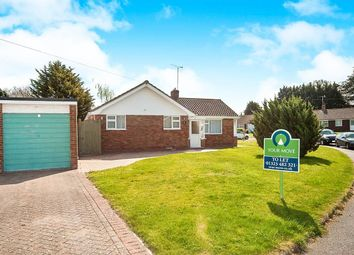Thumbnail 2 bed bungalow to rent in Gosford Way, Polegate