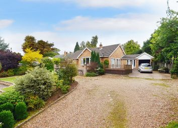 Thumbnail 3 bedroom semi-detached bungalow for sale in Common Lane, Thorpe St. Andrew, Norwich