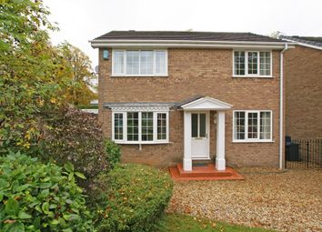 Thumbnail 4 bed detached house to rent in Park Avenue, Darley Dale, Derbyshire