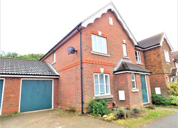 Thumbnail 4 bed semi-detached house to rent in Petronius Way, Colchester