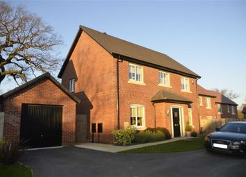 Thumbnail 4 bed detached house for sale in Bloomery Close, Alfreton