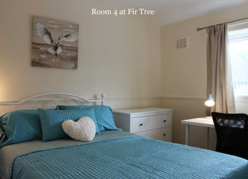 Thumbnail Room to rent in Room 4, 41 Fir Tree Road, Guildford