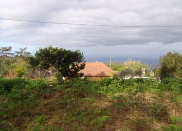 Thumbnail Land for sale in Ponta Do Pargo, Ponta Do Pargo, Calheta (Madeira)