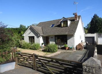 Thumbnail 5 bed detached bungalow for sale in Llandygwydd, Cardigan