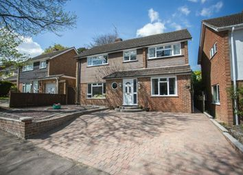 Thumbnail 4 bedroom detached house for sale in Ranelagh Crescent, Ascot