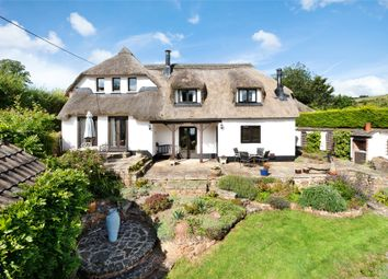 Thumbnail 4 bed detached house for sale in Lower Dawlish Water, Dawlish
