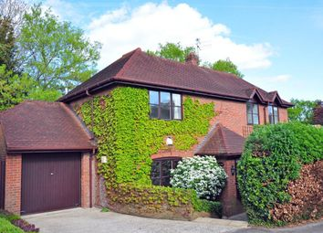 Thumbnail 4 bed detached house to rent in Moyleen Rise, Marlow