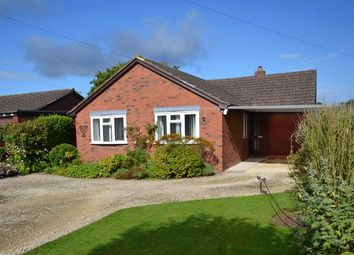 Thumbnail 3 bed detached bungalow for sale in Oldwood Road, Tenbury Wells