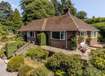 Thumbnail 4 bed detached bungalow for sale in Midhurst Road, Haslemere, Surrey