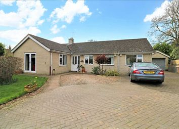Thumbnail 4 bed bungalow for sale in Lime Tree Avenue, Metheringham, Lincoln