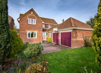 Thumbnail 4 bed detached house for sale in Factory Lane, Roydon, Diss